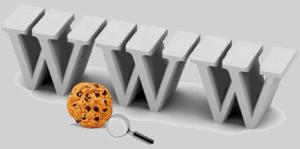 AIKU računari - ŠTA SU KOLAČIĆI (Cookies)? 3