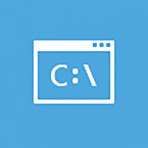 AIKU računari - Advanced Startup Options 13