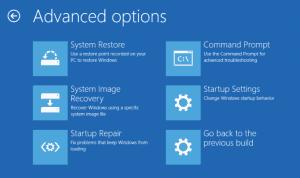 AIKU računari - Advanced Startup Options 8